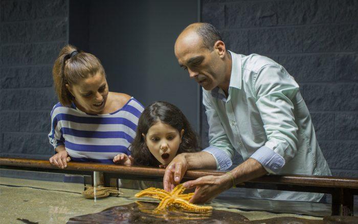 00030 0036 03 20140430 v01 700x438 Rías Baixas: experiências para toda a família