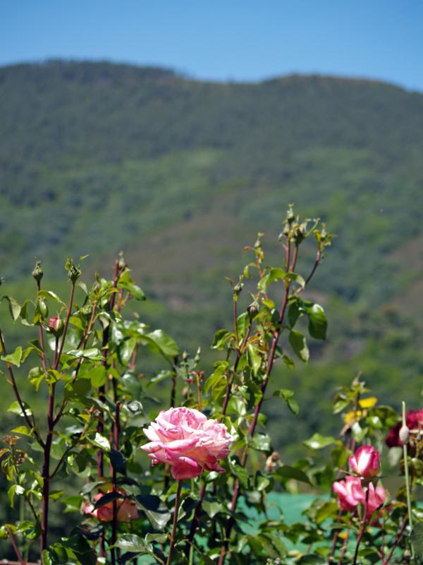IMG3 Uma experiência para viver na Extremadura